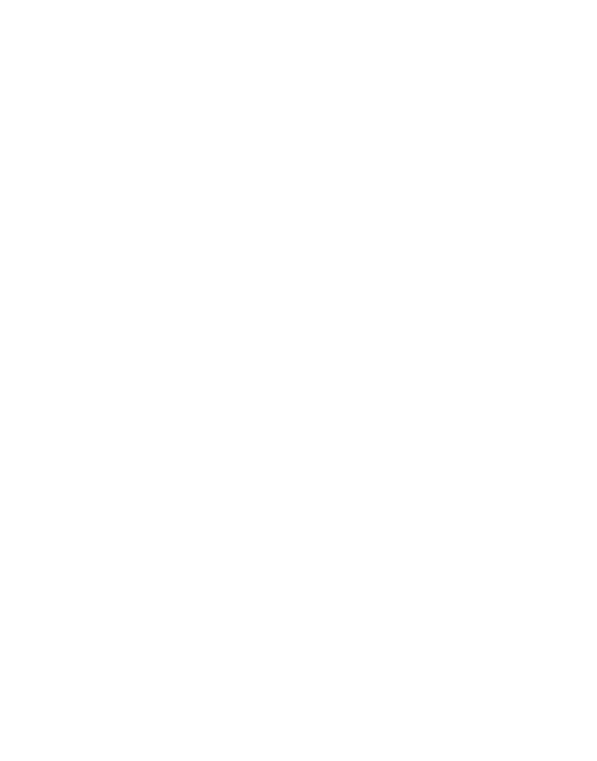 Logo Verband erzgebirgischer Kunsthandwerker und Spielzeughersteller e.V. weiß